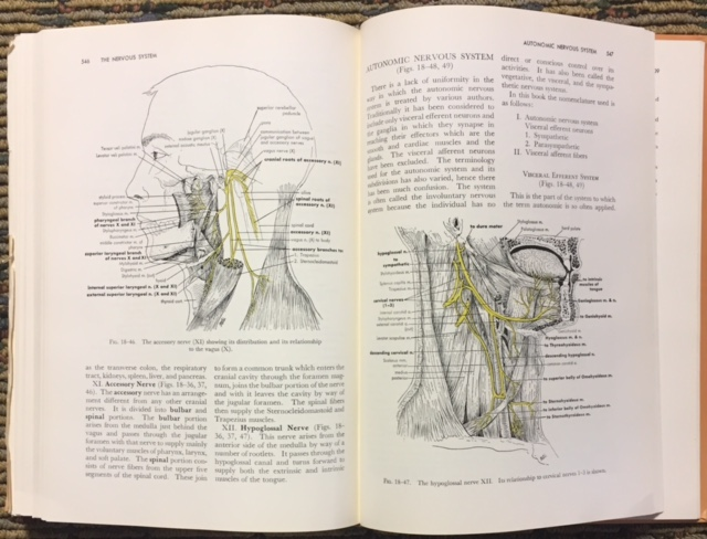 Functional Human Anatomy 2nd Edition By James E Crouch